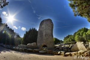 dive Lavezzi Corsica