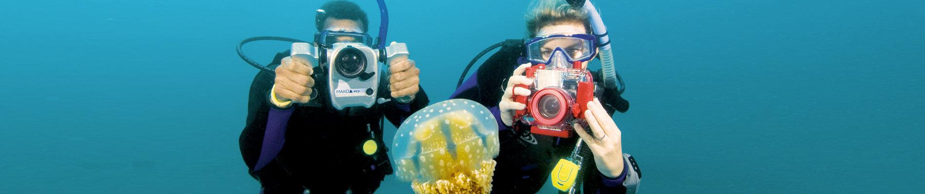 photographie sous marine centre de plongée Sardaigne