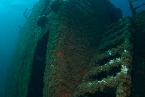 Wreck Dive Nautilus