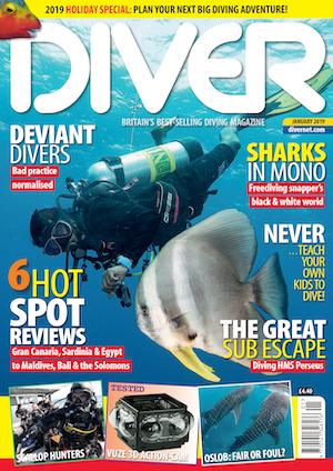 Diver 2019